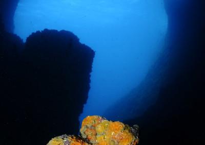 Grotte-del-Formaggio-Cardini
