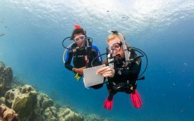 Curso Avanzado Padi – 5 inmersiones