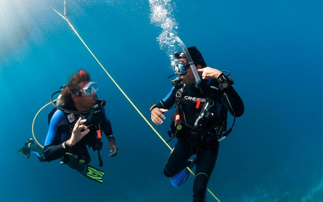 OPEN and ADVANCED WATER DIVER COURSE